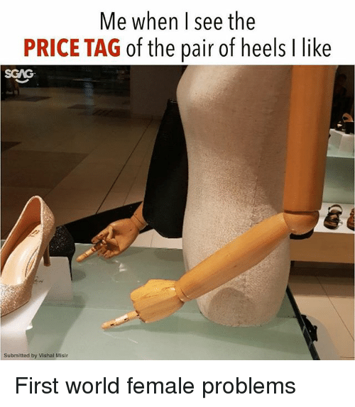 Memes, World, and 🤖: Me when l see the  PRICE TAG of the pair of heels I like  SGAG  Submitted by Vishal Misir First world female problems