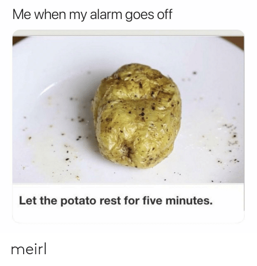 Alarm, Potato, and MeIRL: Me when my alarm goes off  Let the potato rest for five minutes. meirl