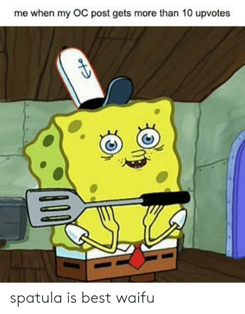 My Oc: me when my OC post gets more than 10 upvotes spatula is best waifu