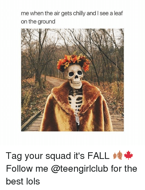 Fall, Squad, and Best: me when the air gets chilly and I see a leaf  on the ground Tag your squad it's FALL 🍂🍁 Follow me @teengirlclub for the best lols