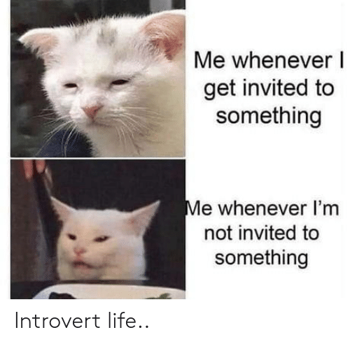 invited: Me whenever I  get invited to  something  Me whenever I'm  not invited to  something Introvert life..