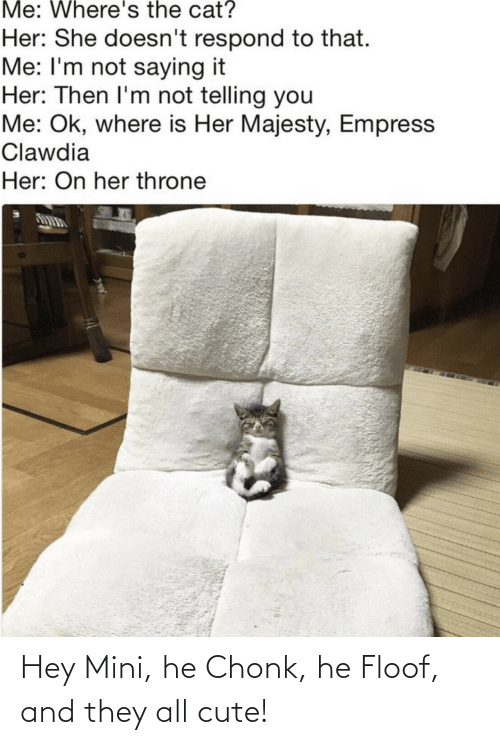 Im Not: Me: Where's the cat?  Her: She doesn't respond to that.  Me: I'm not saying it  Her: Then I'm not telling you  Me: Ok, where is Her Majesty, Empress  Clawdia  Her: On her throne Hey Mini, he Chonk, he Floof, and they all cute!