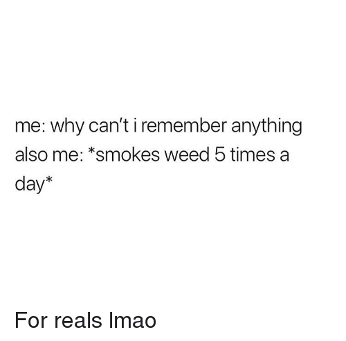 Lmao, Weed, and Marijuana: me: why can't i remember anything  also me: *smokes weed 5 times a  day* For reals lmao