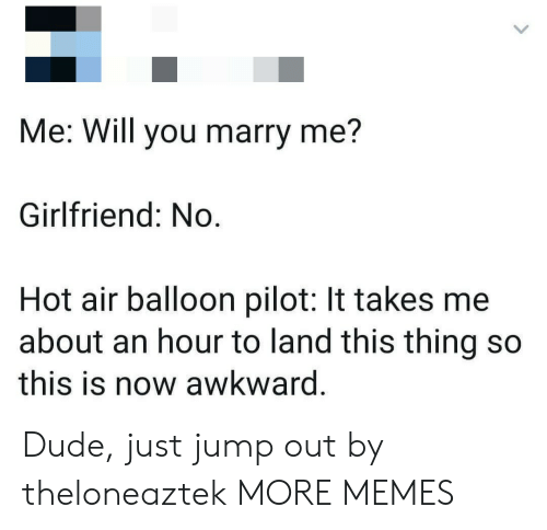 Dank, Dude, and Memes: Me: Will you marry me?  Girlfriend: No.  Hot air balloon pilot: It takes me  about an hour to land this thing so  this is now awkward. Dude, just jump out by theloneaztek MORE MEMES