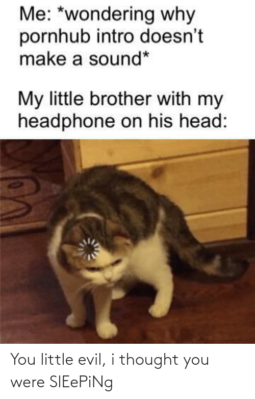 wondering: Me: *wondering why  pornhub intro doesn't  make a sound*  My little brother with my  headphone on his head: You little evil, i thought you were SlEePiNg