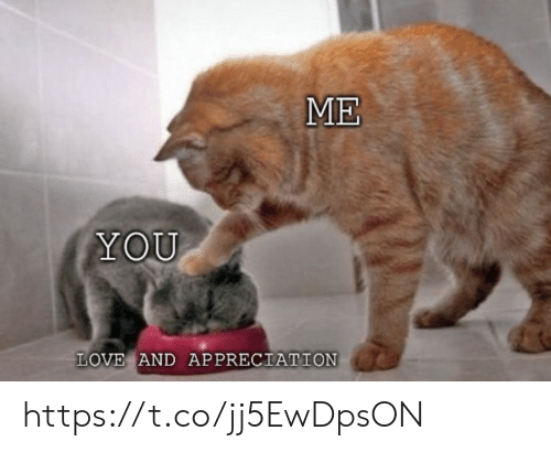 Love, Memes, and 🤖: ME  YOU  LOVE AND APPRECIATION https://t.co/jj5EwDpsON