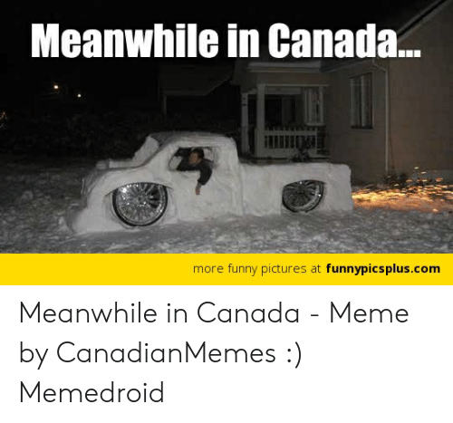 Canada Meme: Meanwhile in Canada...  more funny pictures at funnypicsplus.com Meanwhile in Canada - Meme by CanadianMemes :) Memedroid