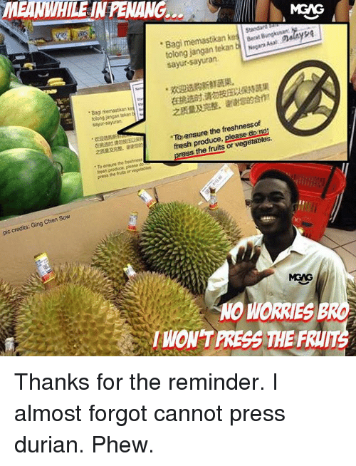 Fresh, Memes, and Ensure: MEANWHILE IN PENANG.  MGAG  Bagi memastikan k S  tolong jangan tekanbara As  sayur-sayuran.  ra Asat alayse  .aspian 新鮮蔬果。  在挑选时请勿  之质量及完整,谢谢  果  合作  . Bag mennastikan ke  に  tolog jangan tekan t1に  sayur-sayuran  To ensure the freshnessof  之质量及完整,谢谢  fresh produce, please do not  press the fruits or vegetables.  To onsure the freatness  press the fruts or  pic credits: Ging Chen Sow  MGAG  NO WORRIES B  WON'T PRESS THE FRUT Thanks for the reminder. I almost forgot cannot press durian. Phew.