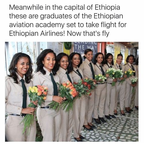 Ethiopians, Memes, and Academy: Meanwhile in the capital of Ethiopia  these are graduates of the Ethiopian  aviation academy set to take flight for  Ethiopian Airlines! Now that's fly  THE WAY