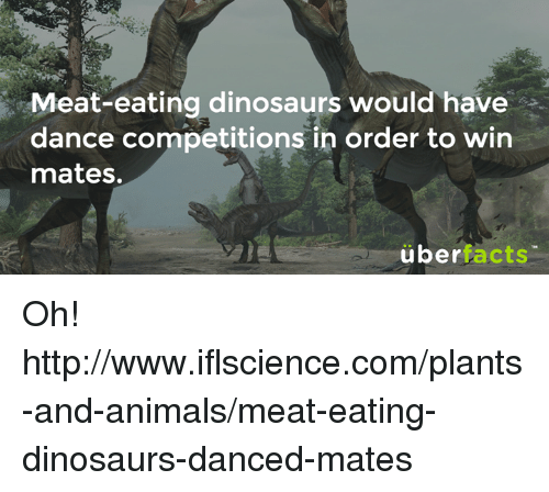 Animals, Memes, and Dinosaurs: Meat-eating dinosaurs would have  dance competitions in order to win  ance CO  mates.  überfacts Oh!  http://www.iflscience.com/plants-and-animals/meat-eating-dinosaurs-danced-mates