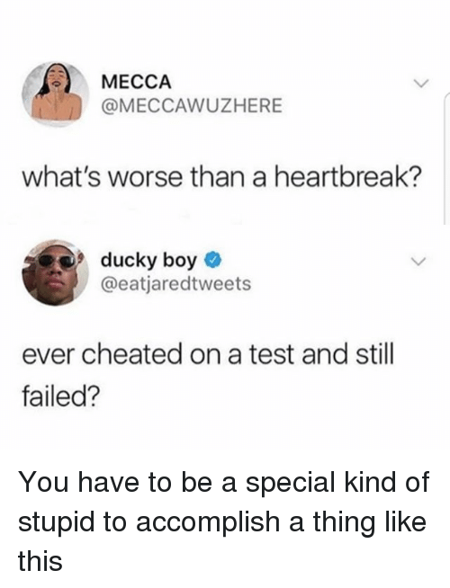 Funny, Test, and Girl Memes: MECCA  @MECCAWUZHERE  what's worse than a heartbreak?  uC  @eatjaredtweets  ever cheated on a test and still  failed? You have to be a special kind of stupid to accomplish a thing like this