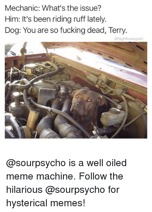 Fucking, Meme, and Memes: Mechanic: What's the issue?  Him: It's been riding ruff lately.  Dog: You are so fucking dead, Terry  @highfiveexpert @sourpsycho is a well oiled meme machine. Follow the hilarious @sourpsycho for hysterical memes!
