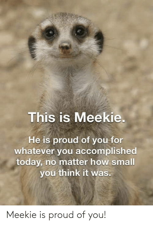Proud Of You: Meekie is proud of you!