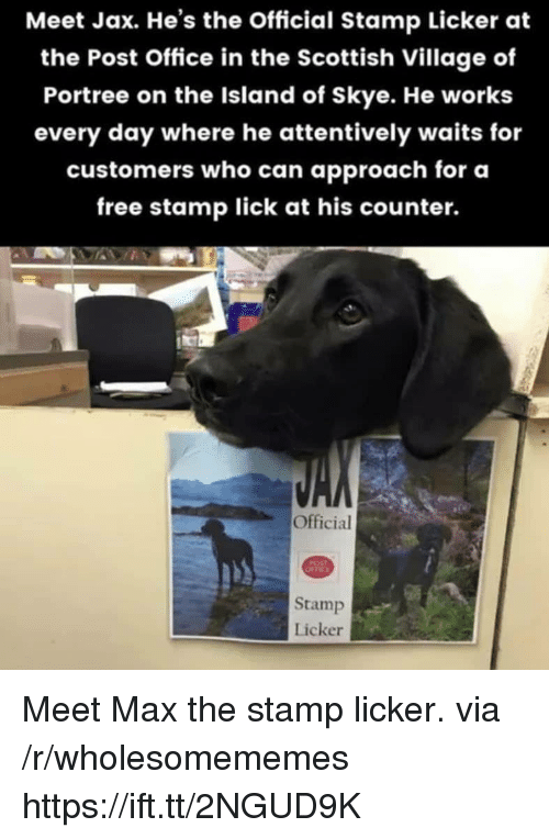 stamp: Meet Jax. He's the Official Stamp Licker at  the Post Office in the Scottish Village of  Portree on the Island of Skye. He works  every day where he attentively waits for  customers who can approach for oa  free stamp lick at his counter.  Official  Stamp  Licker Meet Max the stamp licker. via /r/wholesomememes https://ift.tt/2NGUD9K