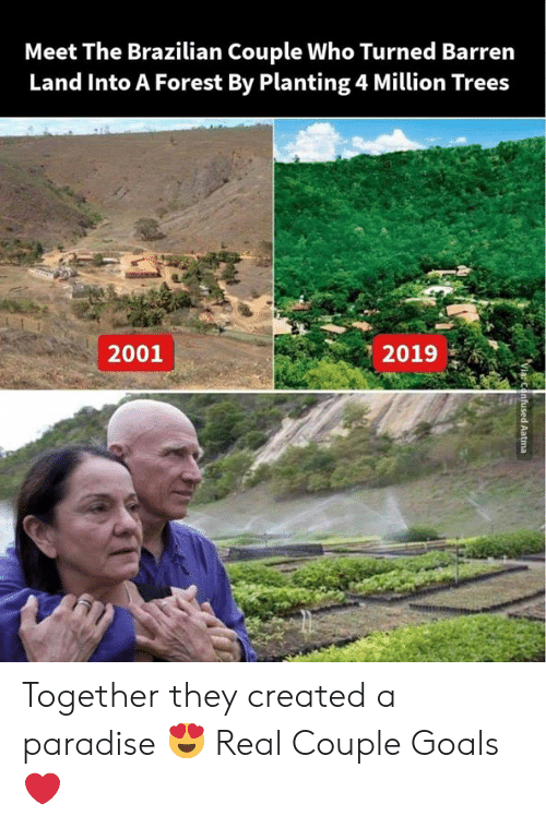 Goals, Memes, and Paradise: Meet The Brazilian Couple Who Turned Barrern  Land Into A Forest By Planting 4 Million Trees  2019  2001 Together they created a paradise 😍 Real Couple Goals❤️