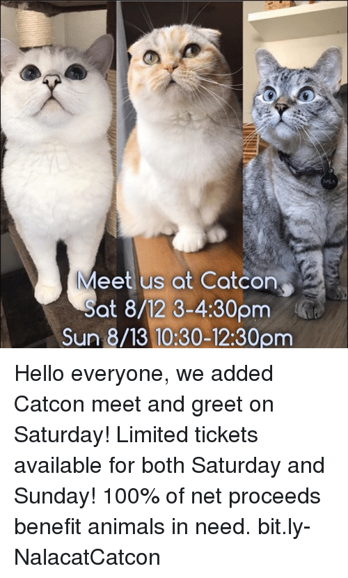 Anaconda, Animals, and Hello: Meet us at Catcon  ot 8/12 3-4:30pmG  Sun 8/13 10:30-12:30pm Hello everyone, we added Catcon meet and greet on Saturday! Limited tickets available for both Saturday and Sunday! 100% of net proceeds benefit animals in need. bit.ly-NalacatCatcon
