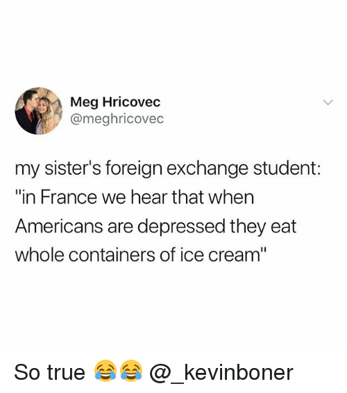 """Funny, Meme, and True: Meg Hricovec  @meghricovec  my sister's foreign exchange student:  """"in France we hear that when  Americans are depressed they eat  whole containers of ice cream"""" So true 😂😂 @_kevinboner"""