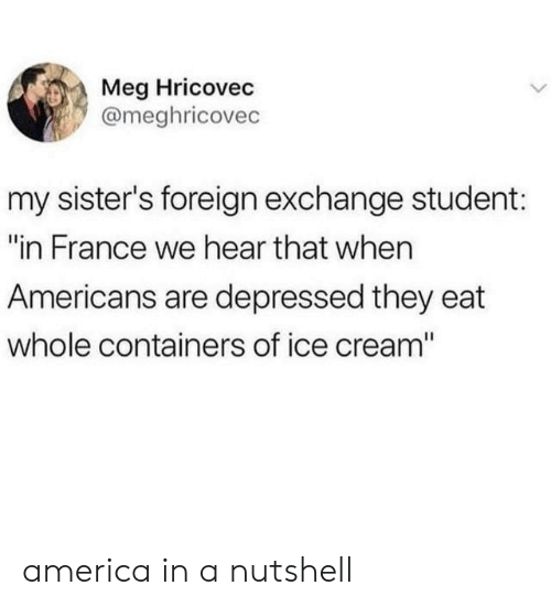 """America, France, and Ice Cream: Meg Hricovec  @meghricovec  my sister's foreign exchange student:  """"in France we hear that when  Americans are depressed they eat  whole containers of ice cream"""" america in a nutshell"""