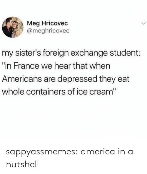 """America, Target, and Tumblr: Meg Hricovec  @meghricovec  my sister's foreign exchange student:  """"in France we hear that when  Americans are depressed they eat  whole containers of ice cream"""" sappyassmemes:  america in a nutshell"""