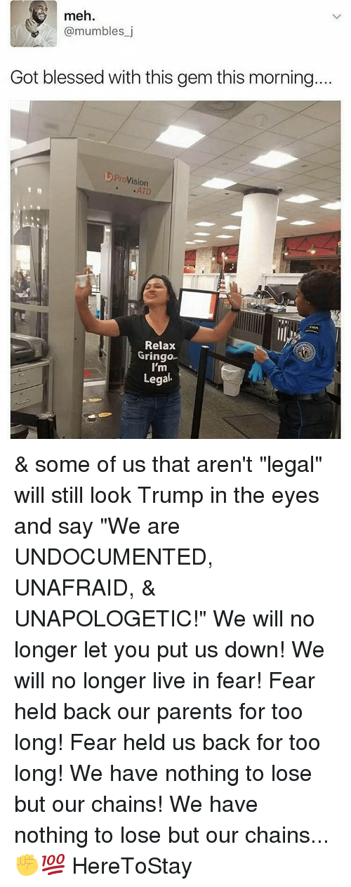 "Meh, Memes, and Nothing to Lose: meh.  @mumbles j  Got blessed with this gem this morning.  Provision  Relax  Gringo  I'm  Legal & some of us that aren't ""legal"" will still look Trump in the eyes and say ""We are UNDOCUMENTED, UNAFRAID, & UNAPOLOGETIC!"" We will no longer let you put us down! We will no longer live in fear! Fear held back our parents for too long! Fear held us back for too long! We have nothing to lose but our chains! We have nothing to lose but our chains...✊💯 HereToStay"
