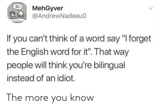 "The More You Know, Word, and English: MehGyver  @AndrewNadeau0  If you can't think of a word say ""I forget  the English word for it"". That way  people will think you're bilingual  instead of an idiot. The more you know"