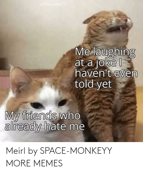Space: Meirl by SPACE-MONKEYY MORE MEMES