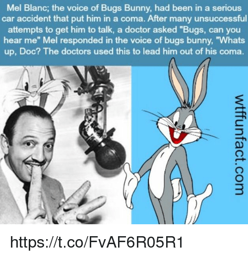 "Bugs Bunny, Doctor, and The Voice: Mel Blanc, the voice of Bugs Bunny, had been in a serious  car accident that put him in a coma. After many unsuccessful  attempts to get him to talk, a doctor asked ""Bugs, can you  hear me"" Mel responded in the voice of bugs bunny, ""Whats  up, Doc? The doctors used this to lead him out of his coma https://t.co/FvAF6R05R1"
