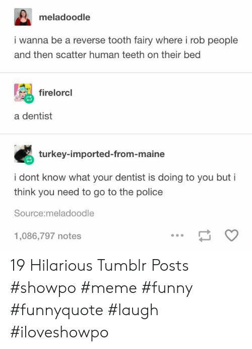 Funny, Meme, and Police: meladoodle  i wanna be a reverse tooth fairy where i rob people  and then scatter human teeth on their bed  firelorcl  a dentist  turkey-imported-from-maine  i dont know what your dentist is doing to you but i  think you need to go to the police  Source:meladoodle  1,086,797 notes 19 Hilarious Tumblr Posts #showpo #meme #funny #funnyquote #laugh #iloveshowpo