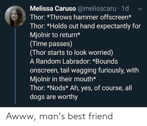 Nods: Melissa Caruso @melisscaru 1d  Thor: *Throws hammer offscreen*  Thor: *Holds out hand expectantly for  Mjolnir to return*  (Time passes)  (Thor starts to look worried)  A Random Labrador: *Bounds  onscreen, tail wagging furiously, with  Mjolnir in their mouth*  Thor: *Nods* Ah, yes, of course, all  dogs are worthy Awww, man's best friend