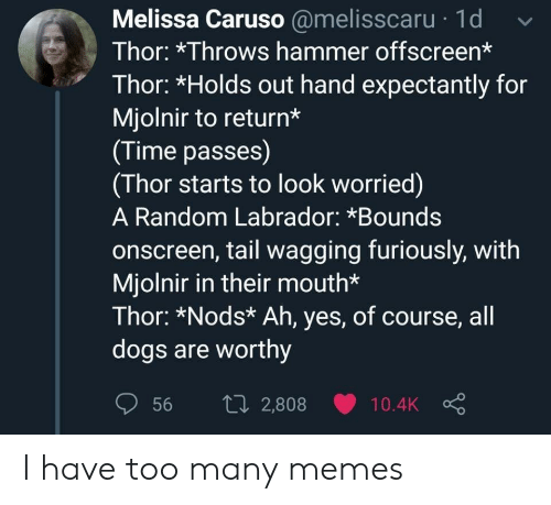 Nods: Melissa Caruso @melisscaru 1d  Thor: *Throws hammer offscreen*  Thor: *Holds out hand expectantly for  Mjolnir to return*  (Time passes)  (Thor starts to look worried)  A Random Labrador: *Bounds  onscreen, tail wagging furiously, with  Mjolnir in their mouth*  Thor: *Nods* Ah, yes, of course, all  dogs are worthy  1i2,808  56  10.4K I have too many memes