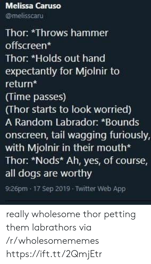 Nods: Melissa Caruso  @melisscaru  Thor: *Throws hammer  offscreen*  Thor: *Holds out hand  expectantly for Mjolnir to  return*  (Time passes)  (Thor starts to look worried)  A Random Labrador: *Bounds  onscreen, tail wagging furiously,  with Mjolnir in their mouth*  Thor: *Nods* Ah, yes, of course,  all dogs are worthy  9:26pm 17 Sep 2019 Twitter Web App really wholesome thor petting them labrathors via /r/wholesomememes https://ift.tt/2QmjEtr