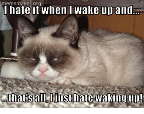 Grumpy Cat, Maker, and Wake: meme maker it when wake up and  I hate Iats all, ljust late waking up!