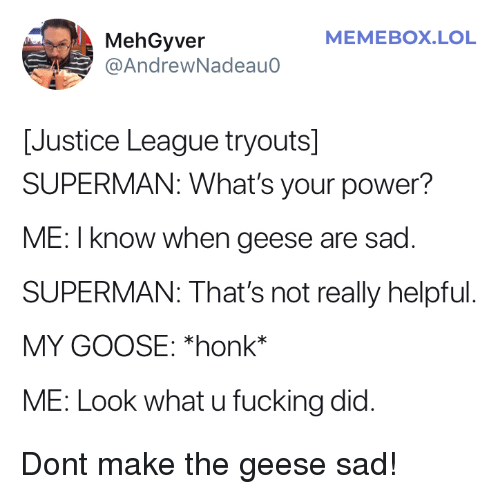 Memebox: MEMEBOX.LOL  MehGyver  @AndrewNadeauo  [Justice League tryouts]  SUPERMAN: What's your power?  ME: I know when geese are sad  SUPERMAN: That's not really helpful  MY GOOSE: *honk*  ME: Look what u fucking did. Dont make the geese sad!