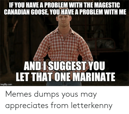 may: Memes dumps yous may appreciates from letterkenny