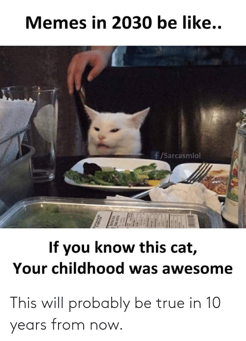 probably: Memes in 2030 be like..  f/Sarcasmlol  If you know this cat,  Your childhood was awesome This will probably be true in 10 years from now.