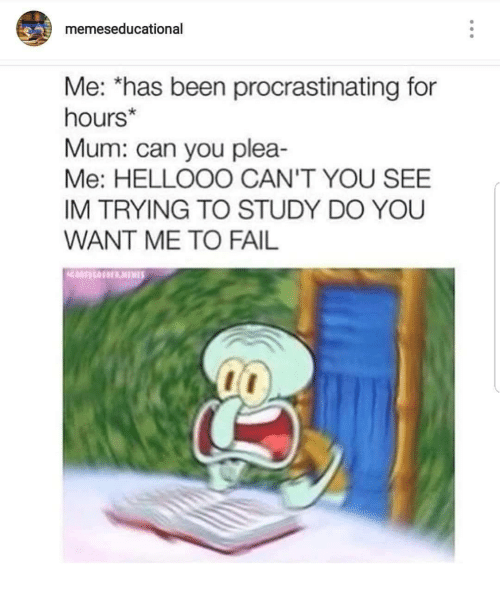 Fail, Been, and Can: memeseducational  Me: has been procrastinating for  hours*  Mum: can you plea-  Me: HELLOOO CAN'T YOU SEE  IM TRYING TO STUDY DO YOU  WANT ME TO FAIL