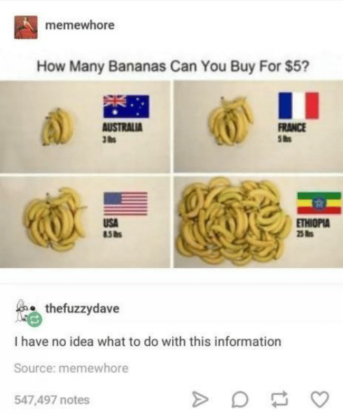 France, Information, and How: memewhore  How Many Bananas Can You Buy For $5?  FRANCE  5as  USA  85 hs  ETHIOPIA  25 s  thefuzzydave  I have no idea what to do with this information  Source: memewhore  547,497 notes