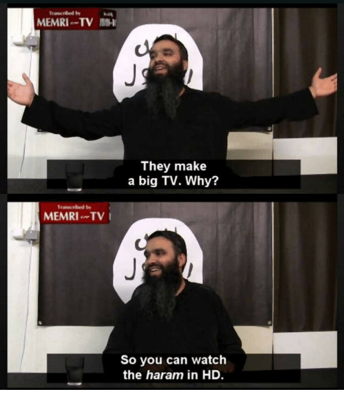 Haram: MEMRI TV 1-  They make  a big TV. Why?  Transcribed by  MEMRITV  So you can watch  the haram in HD.