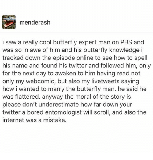 Bored, Internet, and Ironic: menderash  i saw a really cool butterfly expert man on PBS and  was so in awe of him and his butterfly knowledge i  tracked down the episode online to see how to spell  his name and found his twitter and followed him, only  for the next day to awaken to him having read not  only my webcomic, but also my livetweets saying  how i wanted to marry the butterfly man. he said he  was flattered. anyway the moral of the story is  please don't underestimate how far down your  twitter a bored entomologist will scroll, and also the  internet was a mistake.