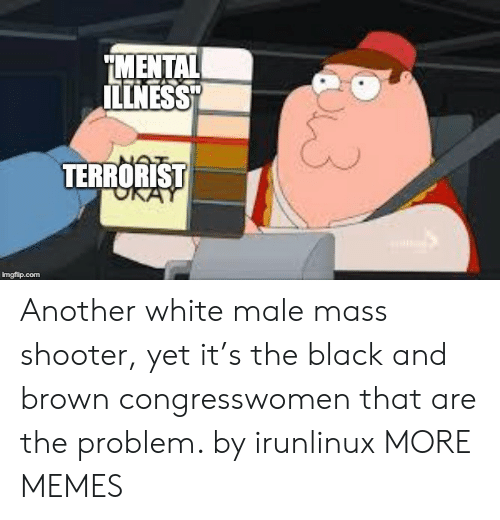 "terrorist: MENTAL  ILLNESS""  TERRORIST  imgflip.com Another white male mass shooter, yet it's the black and brown congresswomen that are the problem. by irunlinux MORE MEMES"