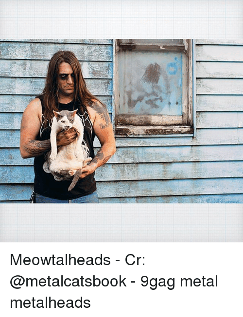 9gag, Memes, and Metal: Meowtalheads - Cr: @metalcatsbook - 9gag metal metalheads