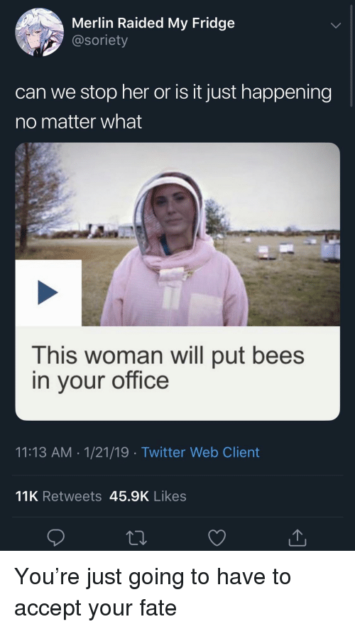 merlin: Merlin Raided My Fridge  @soriety  can we stop her or is it just happening  no matter what  This woman will put bees  in vour office  11:13 AM 1/21/19 Twitter Web Client  11K Retweets 45.9K Likes You're just going to have to accept your fate