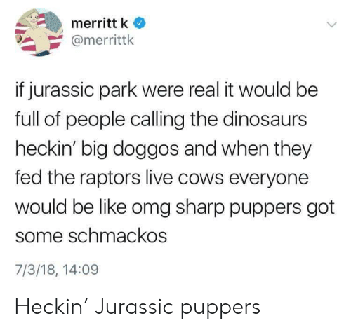 Heckin: merritt k  @merrittk  if jurassic park were real it would be  full of people calling the dinosaurs  heckin' big doggos and when they  fed the raptors live cows everyone  would be like omg sharp puppers got  some schmackos  7/3/18, 14:09 Heckin' Jurassic puppers