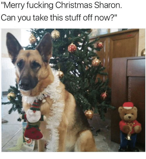 """Memes, 🤖, and  Sharone: """"Merry fucking Christmas Sharon.  Can you take this stuff off now?"""""""