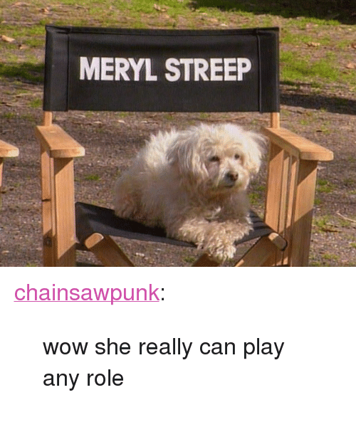 "meryl: MERYL STREEP <p><a class=""tumblr_blog"" href=""http://chainsawpunk.tumblr.com/post/49908113684/wow-she-really-can-play-any-role"">chainsawpunk</a>:</p> <blockquote> <p>wow she really can play any role</p> </blockquote>"