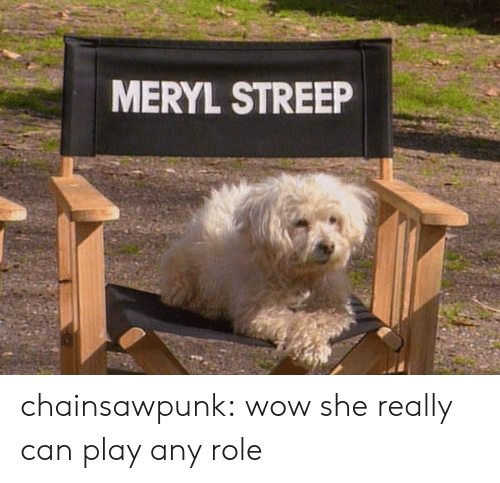 meryl: MERYL STREEP chainsawpunk: wow she really can play any role