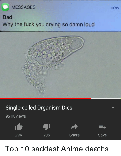 Anime, Crying, and Dad: MESSAGES  now  Dad  Why the fuck you crying so damn loud  Single-celled Organism Dies  951K views  29K  206  Share  Save Top 10 saddest Anime deaths