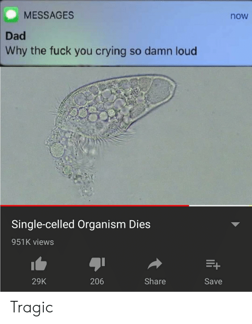 Crying, Dad, and Fuck You: MESSAGES  now  Dad  Why the fuck you crying so damn loud  Single-celled Organism Dies  951K views  29K  206  Share  Save Tragic