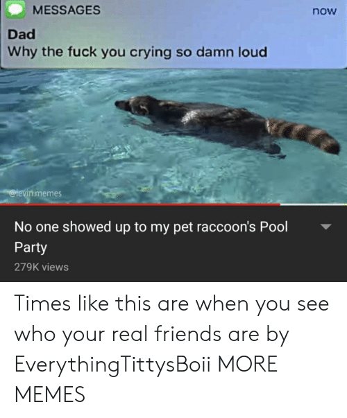 Crying, Dad, and Dank: MESSAGES  now  Dad  Why the fuck you crying so damn loud  levin.memes  No one showed up to my pet raccoon's Pool  Party  279K views Times like this are when you see who your real friends are by EverythingTittysBoii MORE MEMES