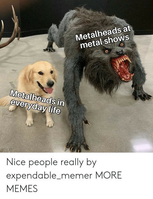 Dank, Life, and Memes: Metalheads at  metal shows  Metalheads in  everyday life Nice people really by expendable_memer MORE MEMES